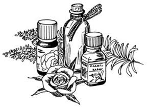 Эфирные масла и травы